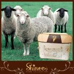 SHINEE ��ڦϤ{�ҡm���ŤѵM100%�D�w�p�Ϥ�Q�n(�´֪?)��H�[�j(8X7��)