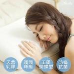 買一送一↘英國Abelia《仕女型天然透氣乳膠枕》