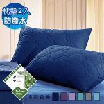 J-bedtime《幸運藤-深藍》 杜邦防潑水X防蹣抗菌枕頭專用保潔-枕墊2入