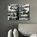 TROMSO時尚無框畫/繁忙指標