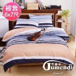 【法國Jumendi-悠遊假期】台灣製活性柔絲絨雙人被套6x7尺