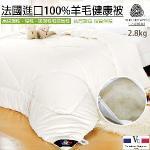 【Valentino 范倫鐵諾】台灣精製 2.8KG 100%法國進口頂級羊毛健康被 46003