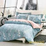 【BEDDING】意蘊幽香 TENCEL 100% 天絲木漿纖維雙人加大薄床包+鋪棉兩用被組