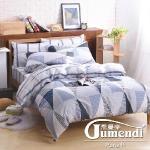 【喬曼帝Jumendi】雙人-嚴選台灣製羽絲絨被(含2枕)+純棉被套床包組(1組)