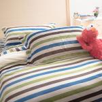 【Ally】雙人加大四件鋪棉蜜絲絨日式繽紛床包被套組