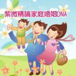 紫微精論家庭婚姻DNA